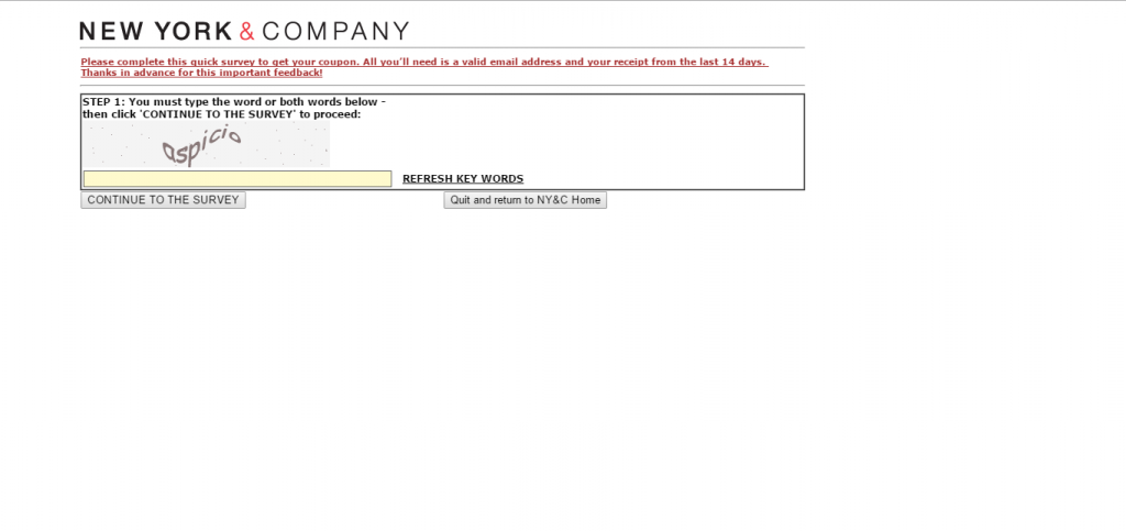 NYandCompany Survey Page