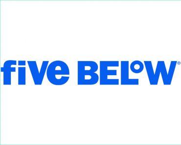 five below survey logo